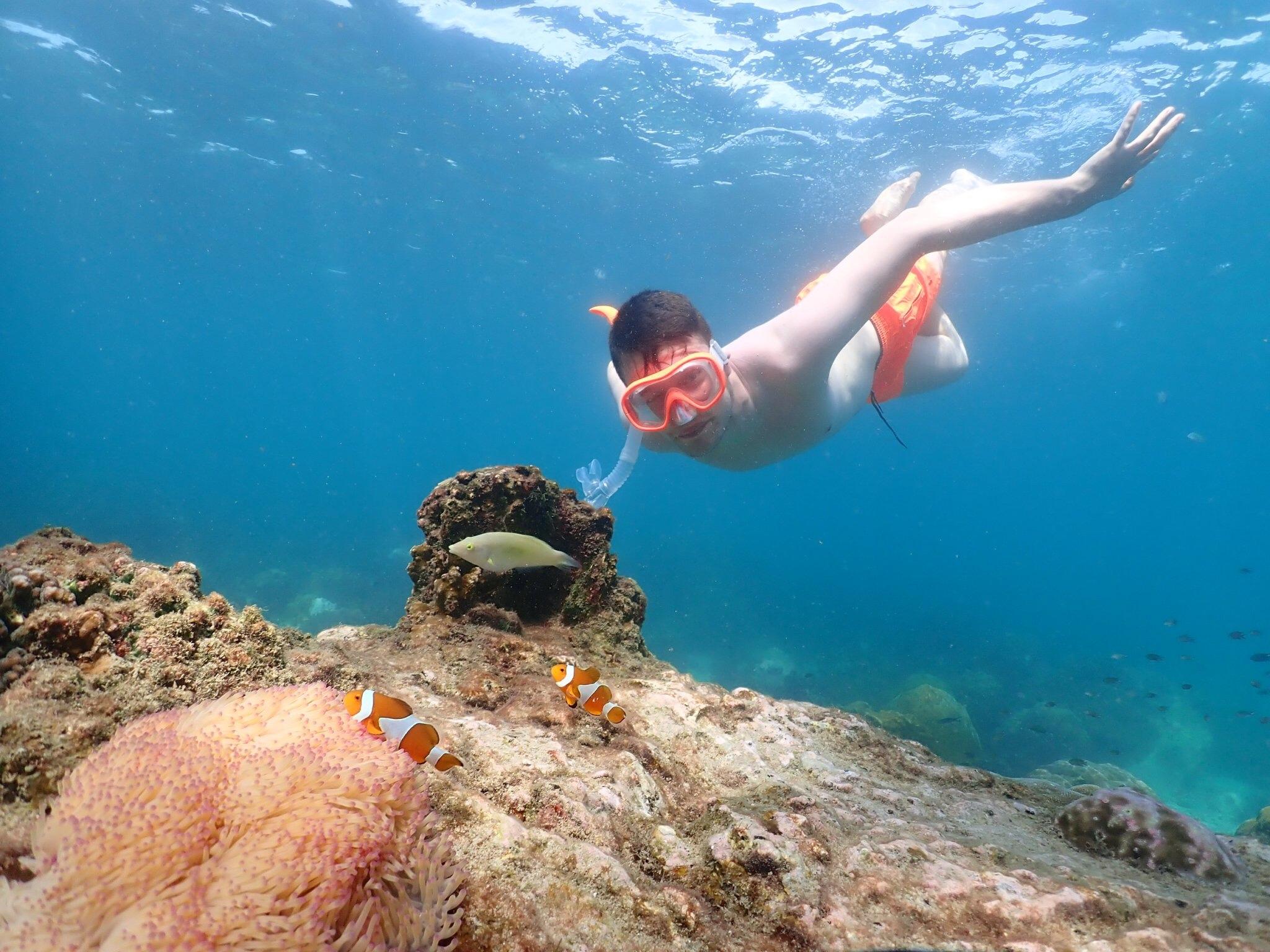 ดำน้ำดูปะการัง ดูปลาการ์ตูน ถ่ายรูปใต้น้ำ คนว่ายน้ำไม่เป็นก็เห็นปลาการ์ตูนได้ ฟรีอุปกรณ์ดำน้ำ